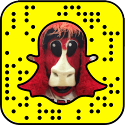 Chicago Bulls Snapchat username