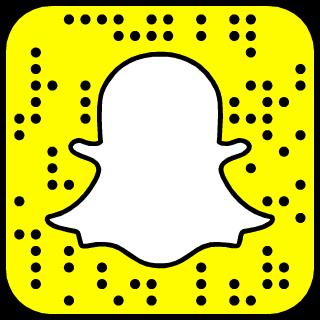 Fabrício Werdum Snapchat username
