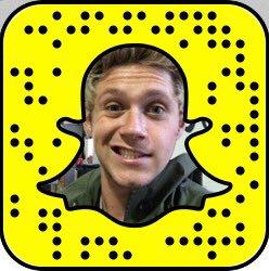 Niall Horan Snapchat username
