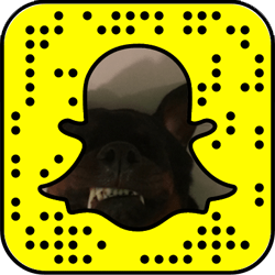 Yovanna Ventura Snapchat username